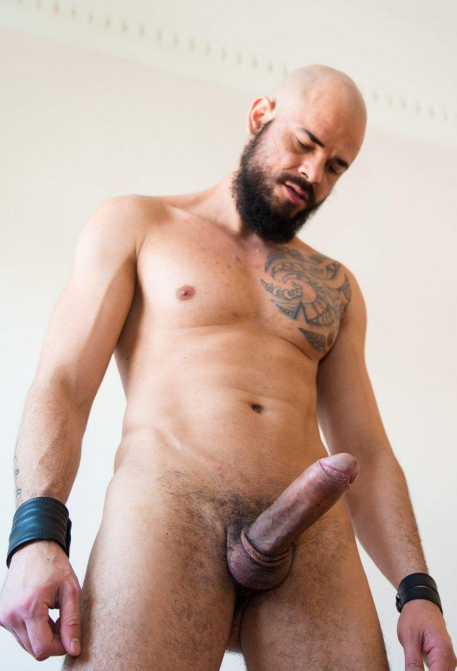 Dalton sirius david avila gay porno HQ online